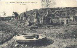 PICARDIE - 60 - OISE - ORROUY - Ruines Gallo-Romaines De Champlieu - France
