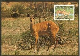 BURKINA FASO Carte Maximum - Guibs Harnachés - Burkina Faso (1984-...)