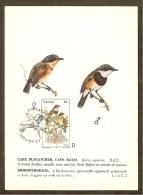 AFRIQUE SUD TRANSKEI Carte Maximum - Batis Capensis - Transkei