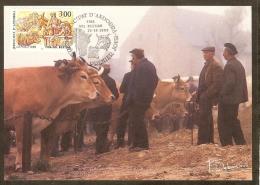 ANDORRE Carte Maximum - Vaches - Maximumkarten (MC)