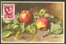BULGARIE Carte Maximum - Pommes - Bulgaria