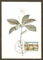 BELGIQUE Carte Maximum - Fleurs De Trientale - Other