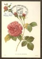 BELGIQUE Carte Maximum - Rose Hélène - Other