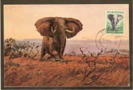AFRIQUE SUD Carte Maximum - Eléphant - Afrique Du Sud (1961-...)