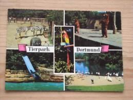 AK 072 – Dortmund – Tierpark  -  Gut Erhalten - Dortmund
