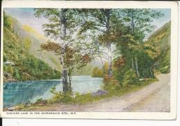 Carte Postale  Etats Unis  : Cascade Lake In The Adirondacks   M.T.S   N.Y - Adirondack