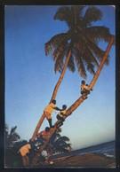 Madagascar *Misión Mosquitia* Ed. Don Bosco. Nueva. - Madagascar