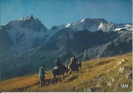 Montée Au Plateau D'EMPARIS  (Hautes Alpes) - Other Municipalities