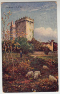 Old Postcard Blarney Castle (pk23011) - Cork