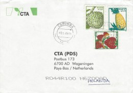 Brasil 2001 Corumba Pineapple Strawberry Fruit Self-adhesive Stamps Cover - Brieven En Documenten