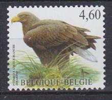 Belgie 2009 Buzin, Zeearend 1w  ** Mnh (19278A) - 1985-.. Birds (Buzin)