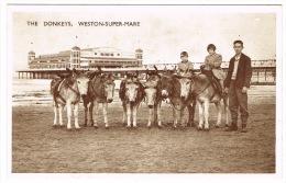 RB 1055 -  Postcard - Donkeys & Pier - Weston-super-Mare Somerset - Weston-Super-Mare
