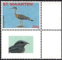St. Maarten 2015 Bird Vogel Oiseau - Sunbittern - Non Classificati