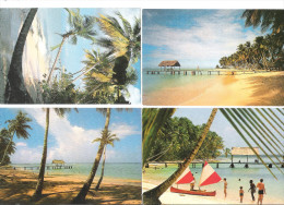Trinidad And Tobago - 4 Cards - Pigeon Point - Trinidad