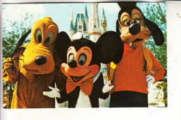 DISNEY - DISNEYWORLD - Mickey, Pluto, Goofy # 79905-C - Disneyworld