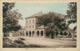 35 PLELAN LE GRAND / La Mairie Et Les Halles / CARTE COULEUR - Frankreich