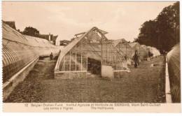 Institut Agricole Et Horticole De Bierbais, Mont Saint Guibert, Les Serres à Vignes (pk21565) - Mont-Saint-Guibert