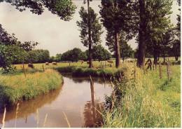 Meerhout Grote Nete 2 - Meerhout