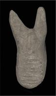 A Rare Roman  Ancient  Red Clay Bull - Aquariophilie
