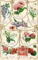 Langage Des Fleurs - - Other