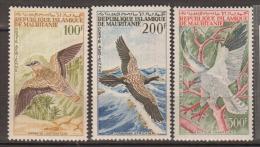 MAURITANIE     1964     PA    N°    34 / 36      COTE     26 € 50           ( Y 322 ) - Mauritanie (1960-...)