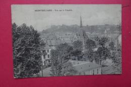 Cp Montbeliard Vue Sur La Citadelle - Montbéliard