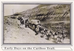 Freight Wagon Near CLINTON BC Postcard, CARIBOO BRITISH COLUMBIA, CANADA Post Card, Carte Postale - British Columbia