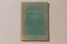 ILLUSTRATED GUIDE TO THE BERNESE OBERLAND, SWITZERLAND - Libri, Riviste, Fumetti