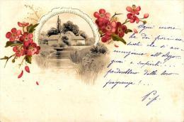 [DC4788] CARTOLINA - FIORI - CAMPAGNA - Viaggiata - Old Postcard - Agricoltura