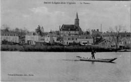 SAINT LEGER DES  VIGNES   / LOT 1337 - France