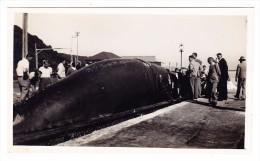 AK GB Unterseeboot - Unterseeboote