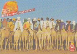 BOOMERANG FREE CARDS - QUICK - MEGA FRITES - Advertising