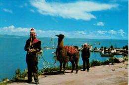 LA  PAZ    LAGO  TITICANA     (NUOVA) - Bolivia