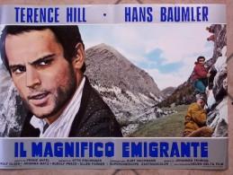 Locandine Cinema  -  Il Magnifico Emigrante - Terence Hill. - Altre Collezioni