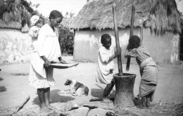 Tsinjobrivo - Pilonnage Du Riz - Madagascar