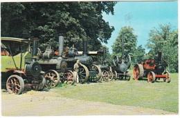 STEAM ENGINES  At Bressingham Gardens  - 1963 -  Norfolk, England - Tractors