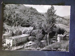 VENETO -VICENZA -TORREBELVICINO -F.G. - Vicenza