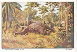 Compagnie Maritime Belge, Artist Image, The Hunt, Killing Elephant Ivory Hunting, C1920s/40s Vintage Postcard - Belgian Congo - Other
