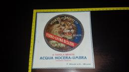 MO-61 PUBBLICITA PUBBLICITARIO FELICE BISLERI & C. MILANO ACQUA NOCERA UMBRA LEONE ILLUSTRATA - Autres