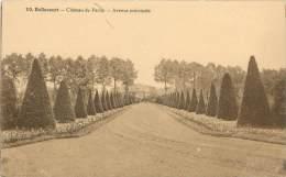 BELLECOURT - Château Du Pachy - Avenue Principale - Manage