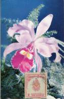 Lote PEP875, Colombia, Postal, Postcard, Tarjeta Maxima, Maximun Card, Orchid, Orquidea, 10360 - Colombia