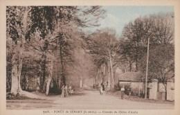 CPSM FORËT DE Sénart (Essonne) - Chemin Du Chêne D'Antin - Ohne Zuordnung