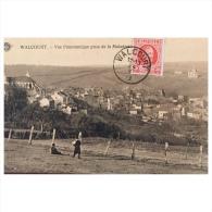 Walcourt  Vue Panoramique Prise De La Maladrerie - Walcourt