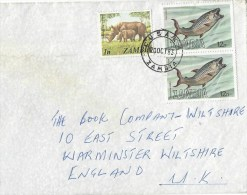 Zambia 1983 Lusaka Tiger Fish 12n Cover - Zambia (1965-...)