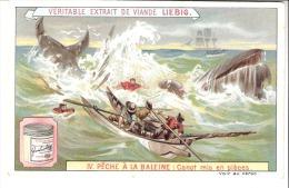 Chromo-Extrait De Viande Liebig- IV. Pêche à La Baleine-Canot Mis Enpièces-Recette-Oseille Au Jus /verso-Cuisine - Liebig