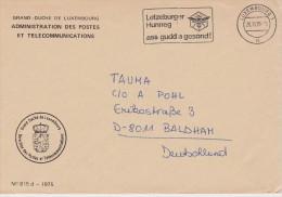 LUXEMBOURG 1975 LETTRE EN FRANCHISE OBL ABEILLE - Abejas
