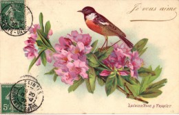 C.P.A. Fleurs De 1907 - Je Vous Aime - Laurier Rose & Traquet - Fleurs