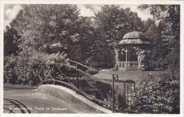 Ak Schneidemühl, Piła, Partie Im Stadtpark, 1942 - Polonia