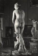 Firenze - Cartolina VENERE DE' MEDICI, Galleria Uffizi, Tribuna - OTTIMA L49 - Sculture