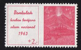 INDONESIA - Scott #B154 Bali Volcano Disaster Fund Surctaxed / Mint H Stamp - Indonésie